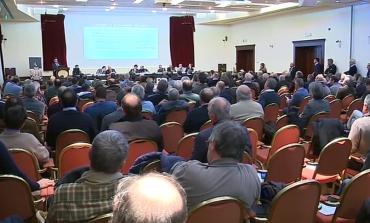 Parmigiano Reggiano, investimenti per 15 milioni
